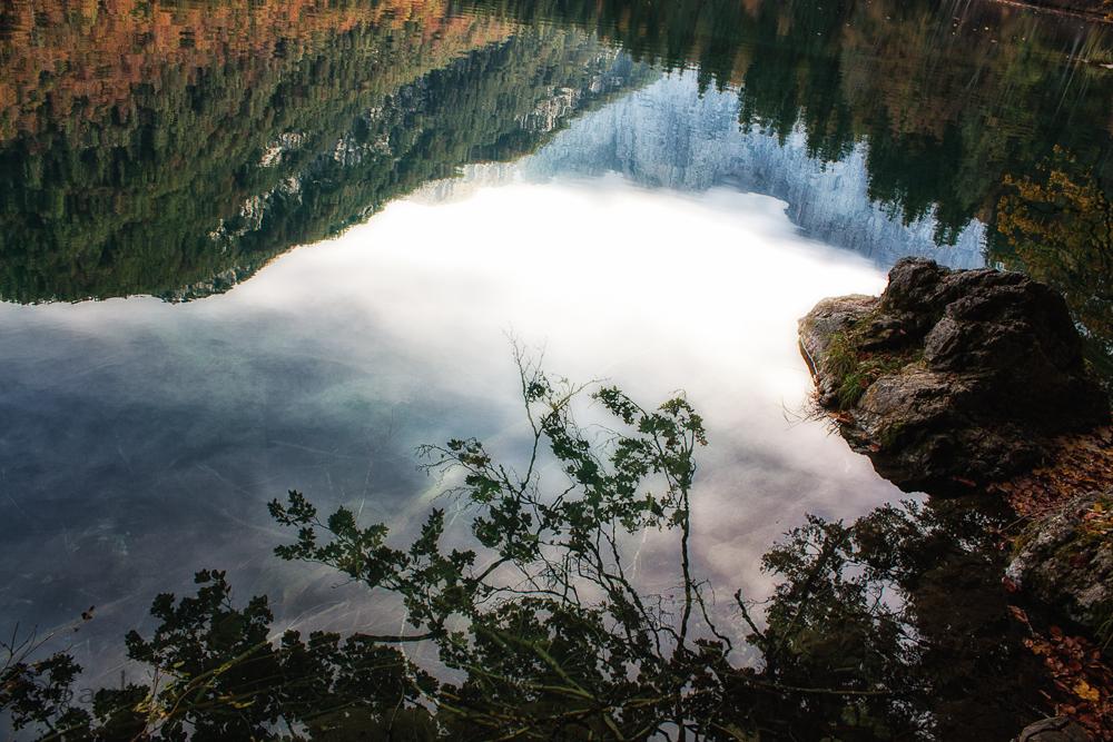 reflection_fusine