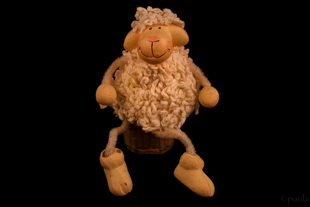 ovcica_tc-1