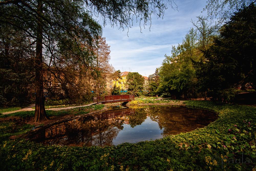 pond_botanicki-1