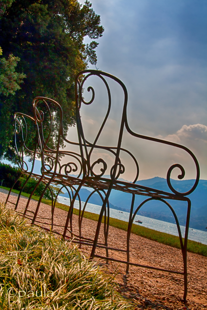 curvy chairs-1_V1_BF_NN_25pos