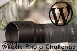 https://bopaula.wordpress.com/category/weekly-photo-challenge/