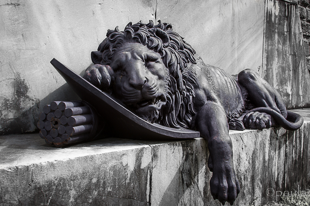 predl_lion sculpture