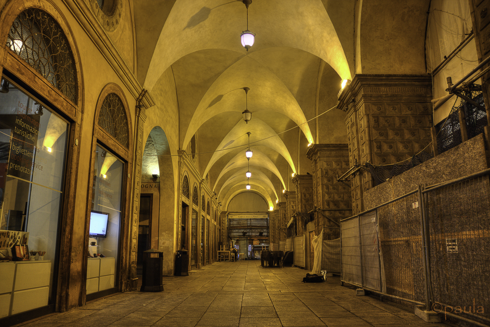 vaults in bologna