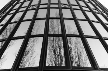 cibona_reflection