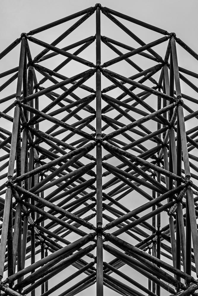 lines_portrait__novi