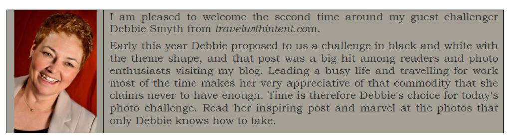 Debbie Smyth_august