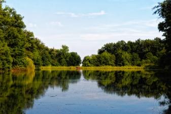 Lake # 5