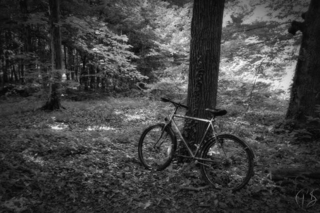 bicikl_crnobijeli-1_potpis