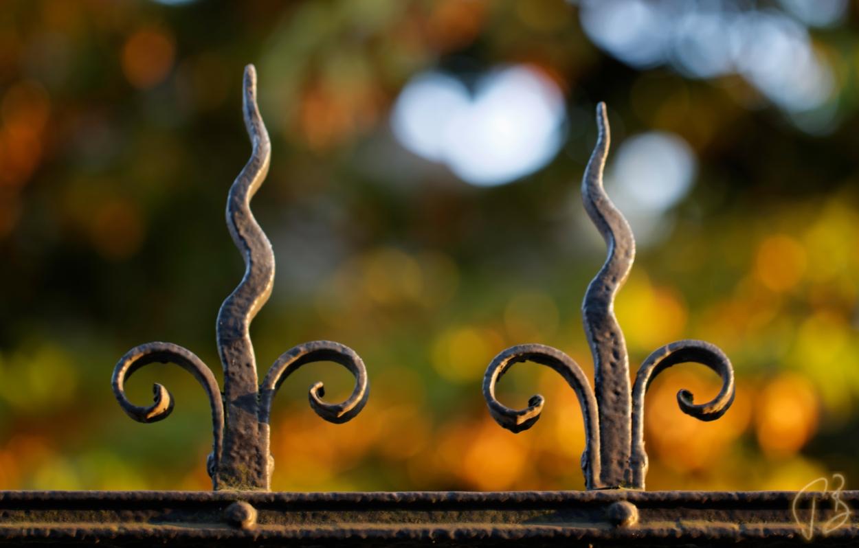 fenced-1-potpis_scale_veci